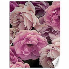 Great Garden Roses Pink Canvas 36  X 48