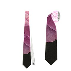 Great Garden Roses Pink Neckties (one Side)