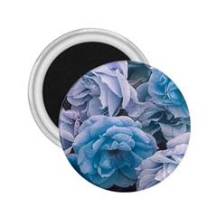 Great Garden Roses Blue 2 25  Magnets