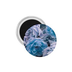 Great Garden Roses Blue 1 75  Magnets
