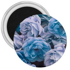 Great Garden Roses Blue 3  Magnets