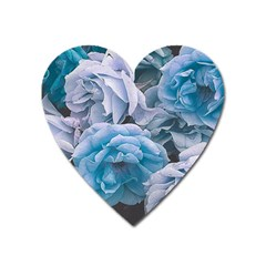 Great Garden Roses Blue Heart Magnet