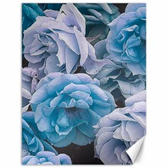 Great Garden Roses Blue Canvas 12  X 16