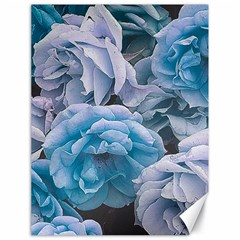 Great Garden Roses Blue Canvas 18  X 24