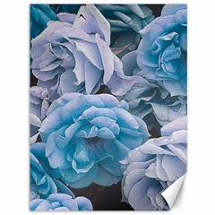 Great Garden Roses Blue Canvas 36  X 48
