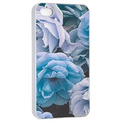 Great Garden Roses Blue Apple iPhone 4/4s Seamless Case (White)