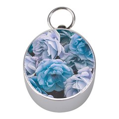 Great Garden Roses Blue Mini Silver Compasses