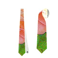 Great Garden Roses, Orange Neckties (Two Side)