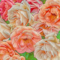 Great Garden Roses, Orange Magic Photo Cubes