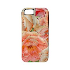 Great Garden Roses, Orange Apple Iphone 5 Classic Hardshell Case (pc+silicone)