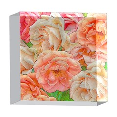 Great Garden Roses, Orange 5  x 5  Acrylic Photo Blocks