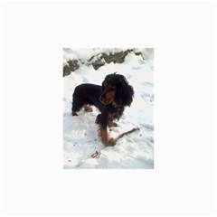 Black Tri English Cocker Spaniel In Snow Collage 12  x 18