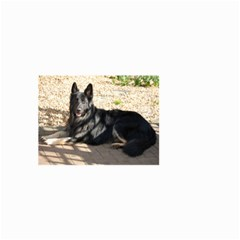 Black German Shepherd Laying Small Garden Flag (Two Sides)