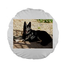 Black German Shepherd Laying Standard 15  Premium Flano Round Cushions