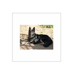 Black German Shepherd Laying Satin Bandana Scarf