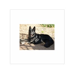 Black German Shepherd Laying Small Satin Scarf (Square)