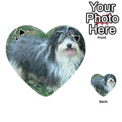 Havanese Full Playing Cards 54 (Heart)