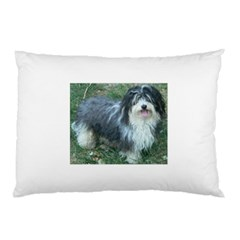 Havanese Full Pillow Cases