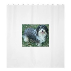 Havanese Full Shower Curtain 66  x 72  (Large)