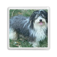 Havanese Full Memory Card Reader (Square)