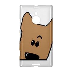 Peeping Yorkshire terrier Nokia Lumia 1520