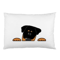 Peeping Rottweiler Pillow Cases
