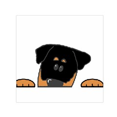 Peeping Rottweiler Small Satin Scarf (Square)