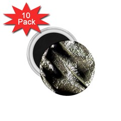 Brilliant Metal 5 1 75  Magnets (10 Pack)
