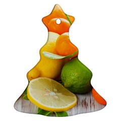Citrus Fruits Christmas Tree Ornament (2 Sides)