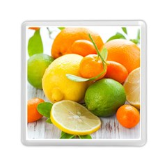 Citrus Fruits Memory Card Reader (square)