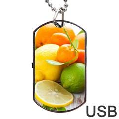 Citrus Fruits Dog Tag Usb Flash (two Sides)