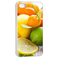 Citrus Fruits Apple iPhone 4/4s Seamless Case (White)