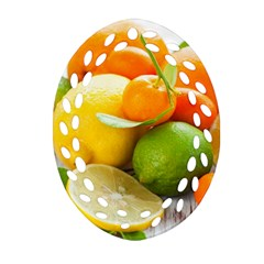Citrus Fruits Ornament (Oval Filigree)