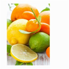 Citrus Fruits Small Garden Flag (Two Sides)