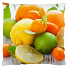 Citrus Fruits Large Flano Cushion Cases (Two Sides)