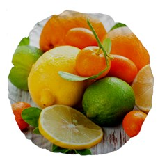 Citrus Fruits Large 18  Premium Flano Round Cushions