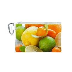 Citrus Fruits Canvas Cosmetic Bag (s)