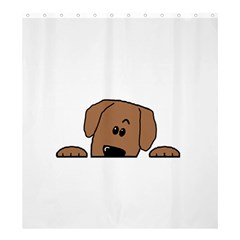 Peeping Dachshund Shower Curtain 66  x 72  (Large)