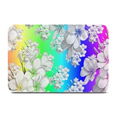 Delicate Floral Pattern,rainbow Plate Mats