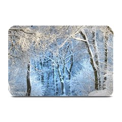 Another Winter Wonderland 1 Plate Mats