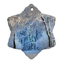 Another Winter Wonderland 1 Snowflake Ornament (2 Side)