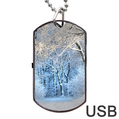 Another Winter Wonderland 1 Dog Tag Usb Flash (one Side)