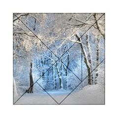 Another Winter Wonderland 1 Acrylic Tangram Puzzle (6  x 6 )