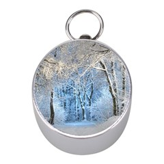 Another Winter Wonderland 1 Mini Silver Compasses