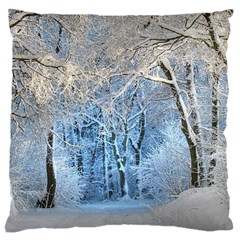 Another Winter Wonderland 1 Large Flano Cushion Cases (One Side)