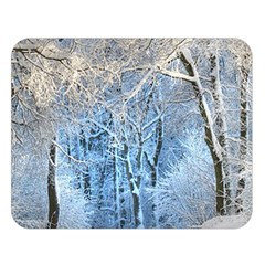 Another Winter Wonderland 1 Double Sided Flano Blanket (large)