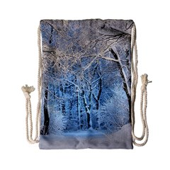 Another Winter Wonderland 1 Drawstring Bag (small)