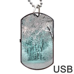 Another Winter Wonderland 2 Dog Tag USB Flash (Two Sides)