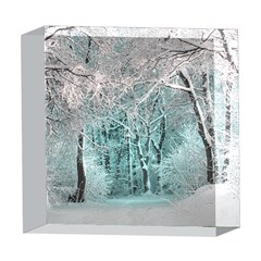 Another Winter Wonderland 2 5  x 5  Acrylic Photo Blocks