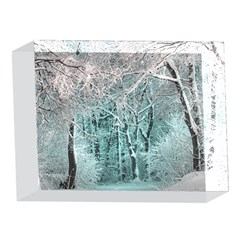 Another Winter Wonderland 2 5 x 7  Acrylic Photo Blocks